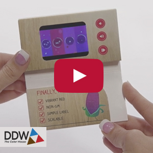 "Video Business Card - 2.4"" screen, three buttons, card stock cover"